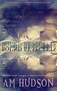 bound by secrets am hudson cover