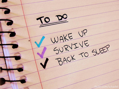 survival check list